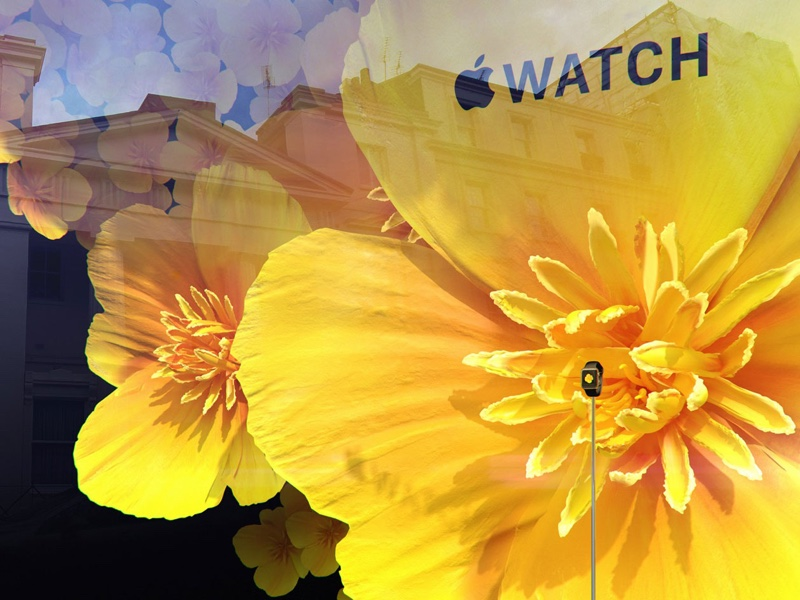 applewatchselfridges1